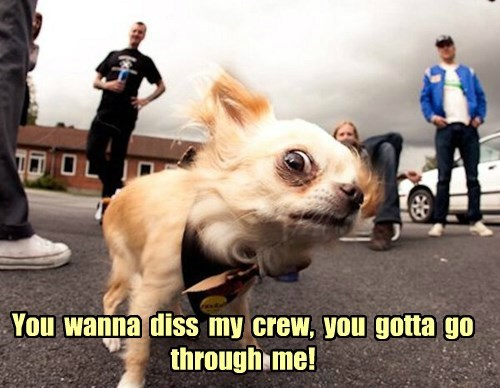 You  wanna  diss  my  crew,  you  gotta  go  through  me!