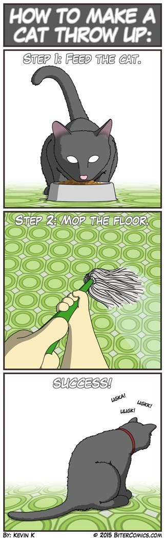 Tragically Accurate Guide to Make a Cat Throw Up