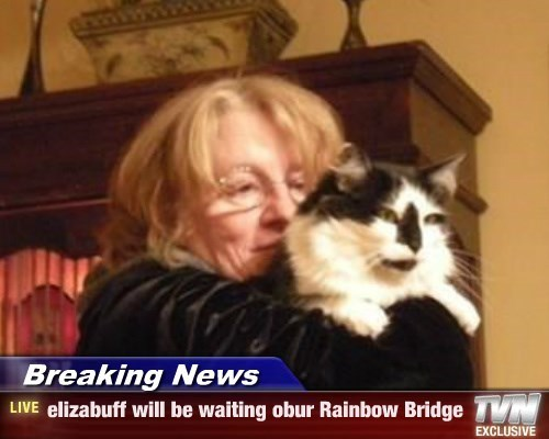Breaking News - elizabuff will be waiting obur Rainbow Bridge