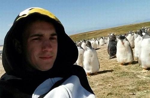 onesie,poorly dressed,penguins,blending in