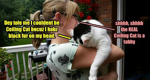 Dey tole me I couldent be Ceiling Cat becuz I habz black fur on my head.