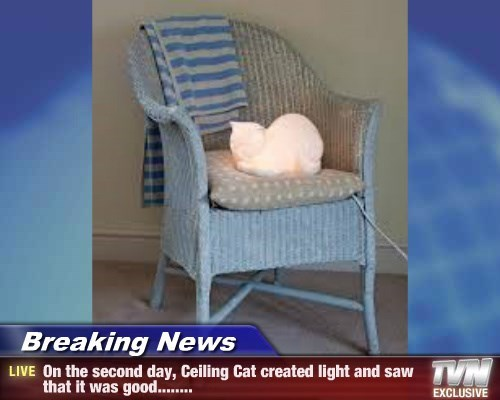 Breaking News - On the second day, Ceiling Cat created light and saw that it was good........