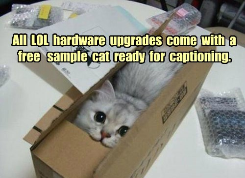 All  LOL  hardware  upgrades  come  with  a  free   sample  cat  ready  for  captioning.