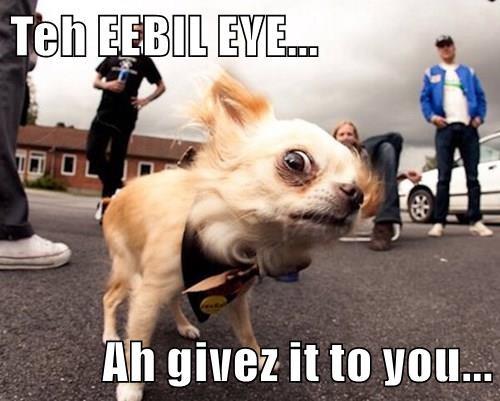 Teh EEBIL EYE...  Ah givez it to you...