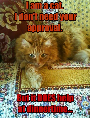 I am a cat.  I don't need your approval.