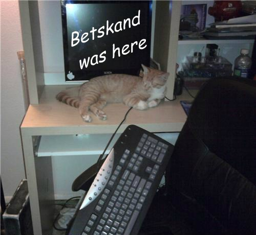 Betskand  was here