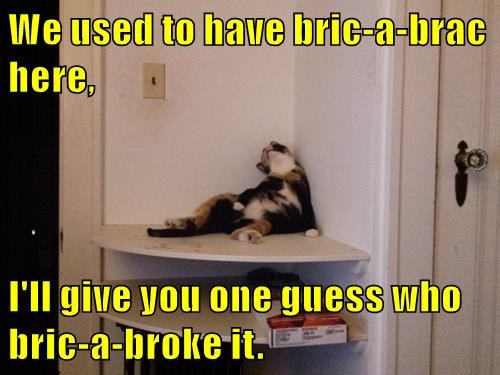 We used to have bric-a-brac here,  I'll give you one guess who bric-a-broke it.