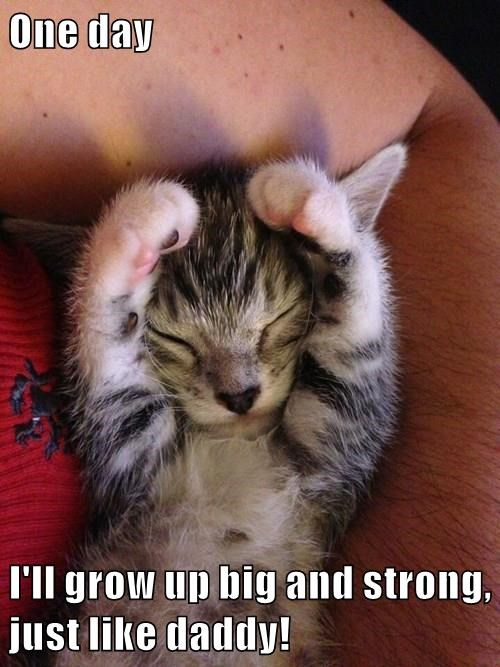 One day  I'll grow up big and strong, just like daddy!