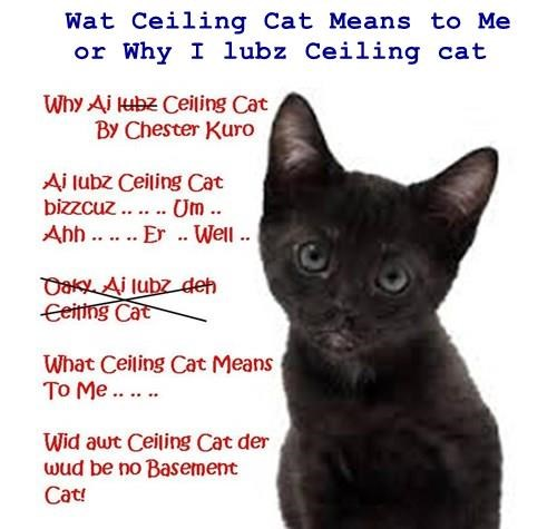 Wat Ceiling Cat Means to Me     or Why I lubz Ceiling cat