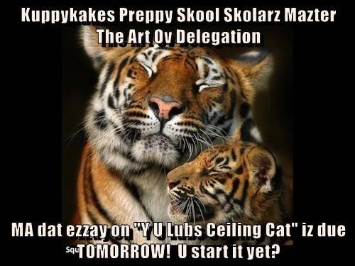 "Kuppykakes Preppy Skool Skolarz Mazter          The Art Ov Delegation    MA dat ezzay on ""Y U Lubs Ceiling Cat"" iz due TOMORROW!  U start it yet?"