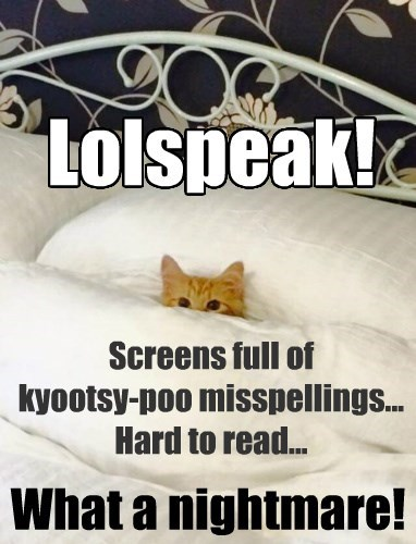 Lolspeak! Screens full of kyootsy-poo misspellings... hard to read... what a nightmare! (wide-eyed orange cat in bed, peeking out from under the comforter)