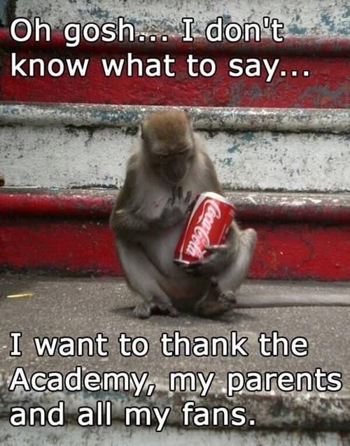 thank you,coke,monkey,academy awards,i have no idea what im doing