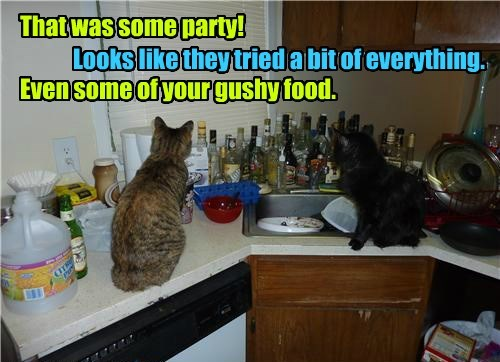 That was some party!