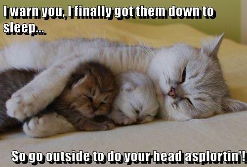 I warn you, I finally got them down to sleep...  So go outside to do your head asplortin'!