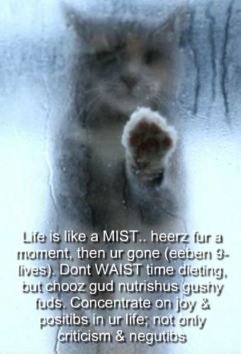 Life is like a MIST.. heerz fur a moment, then we're gone