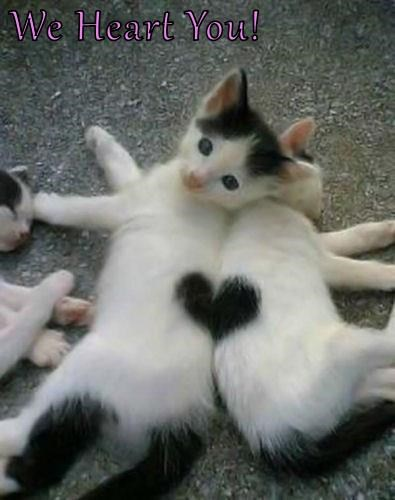 We Heart You!