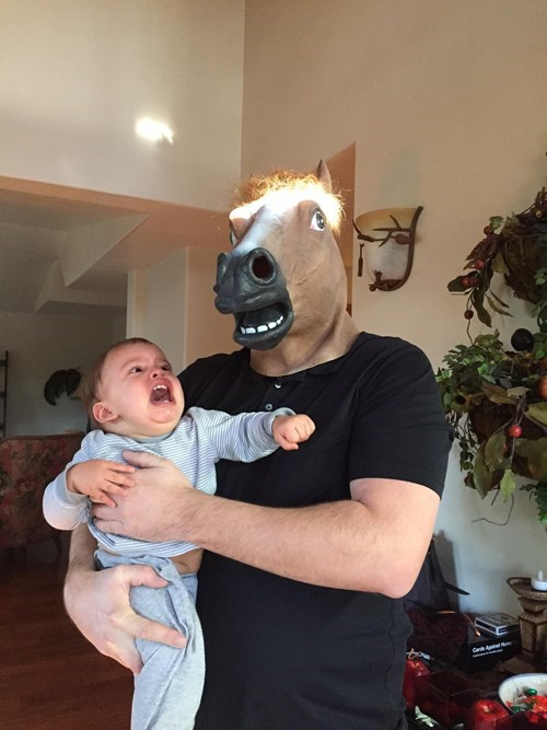 I Don't Think He Likes the Horse Mask