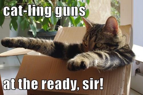 cat-ling guns  at the ready, sir!