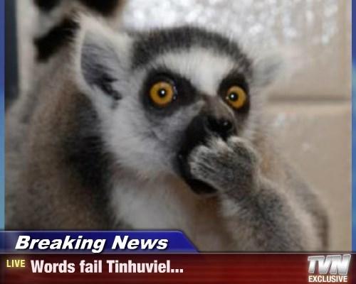 Breaking News - Words fail Tinhuviel...