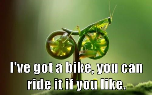 I've got a bike, you can ride it if you like.
