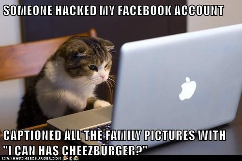 """SOMEONE HACKED MY FACEBOOK ACCOUNT  CAPTIONED ALL THE FAMILY PICTURES WITH                             """"I CAN HAS CHEEZBURGER?"""""""