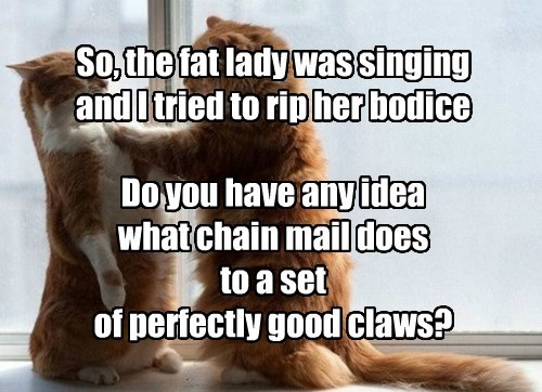 So, the fat lady was singing and I tried to rip her bodice  Do you have any idea  what chain mail does to a set of perfectly good claws?