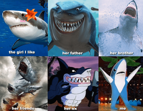 Shark Dating Is Tough