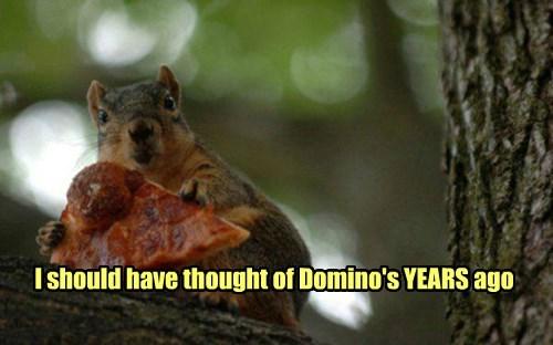 Screw Nuts!