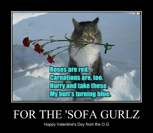 FOR THE 'SOFA GURLZ