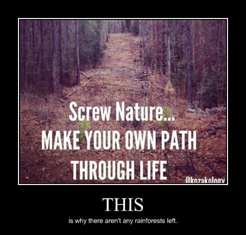 nature,rainforest,funny