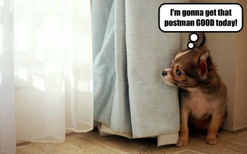 I'm gonna get that postman GOOD today!