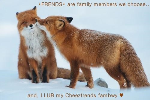 *FRENDS* are family members we choose..  and, I LUB my Cheezfrends fambwy ♥