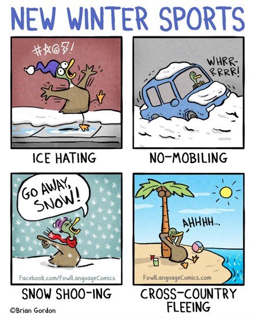 New Winter Sports
