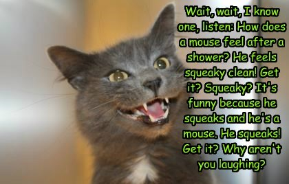 Wait, wait, I know one, listen: How does a mouse feel after a shower? He feels squeaky clean! Get it? Squeaky? It's funny because he squeaks and he's a mouse. He squeaks! Get it? Why aren't you laughing?