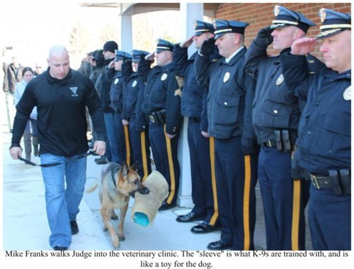 Judge the Police Dog Receives a Hero's Tribute During His Final Vet Visit