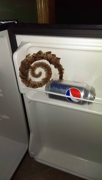 epic-win-pics-soda-freezer-frozen