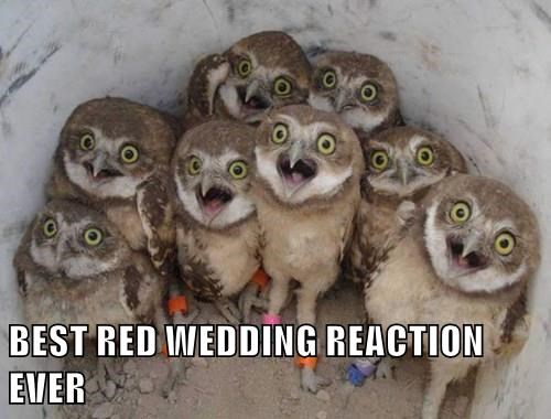 BEST RED WEDDING REACTION EVER