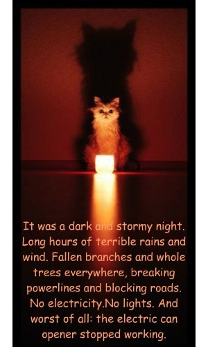 It was a dark and stormy night. Long hours of terrible rains and wind. Fallen branches and whole trees everywhere, breaking powerlines and blocking roads.  No electricity.No lights. And  worst of all: the electric can  opener stopped working.