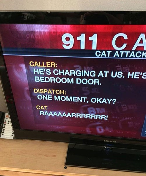 Some 911 Calls Will Live in Infamy