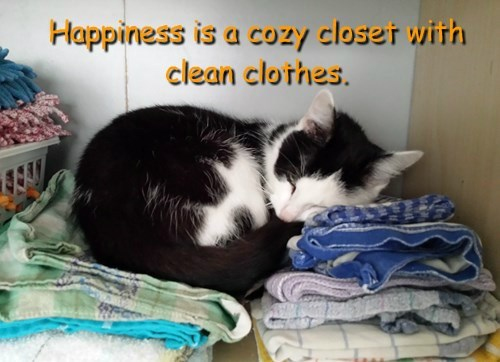 Happiness is a cozy closet with clean clothes.