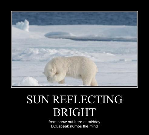 SUN REFLECTING BRIGHT