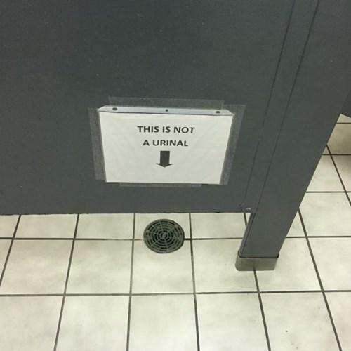 funny-sign-fails-warning-bathroom
