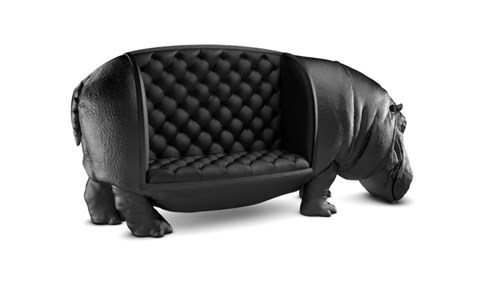 Take a Seat Right There on the Hippopotamus