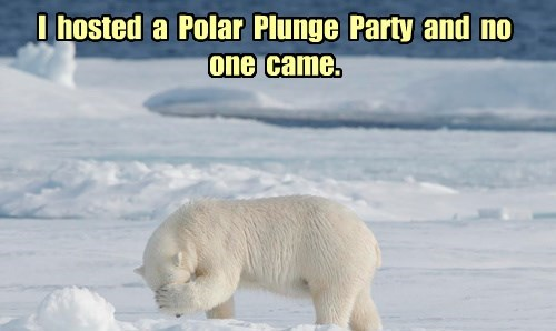 I  hosted  a  Polar  Plunge  Party  and  no  one  came.