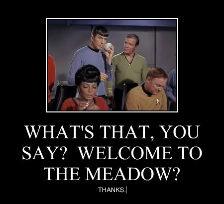 WHAT'S THAT, YOU SAY?  WELCOME TO THE MEADOW?