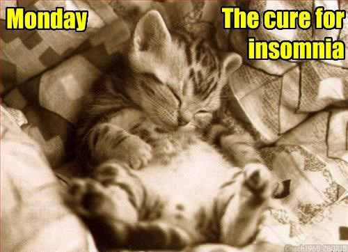 Monday The cure for insomnia Chech1965 280215