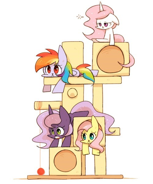 my-little-brony-ponify-cat-tower-cute