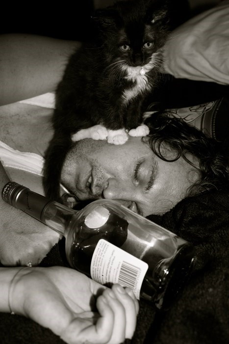 passed out drunk with cats is the best drunk