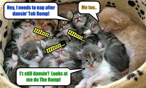 Teh Ittie Bitties had der bery own Mosh Pit at teh KKPS Balentines Dans! Dey dansed The Romp der.. but den dey got bery tired as littl kitties ar want to do..
