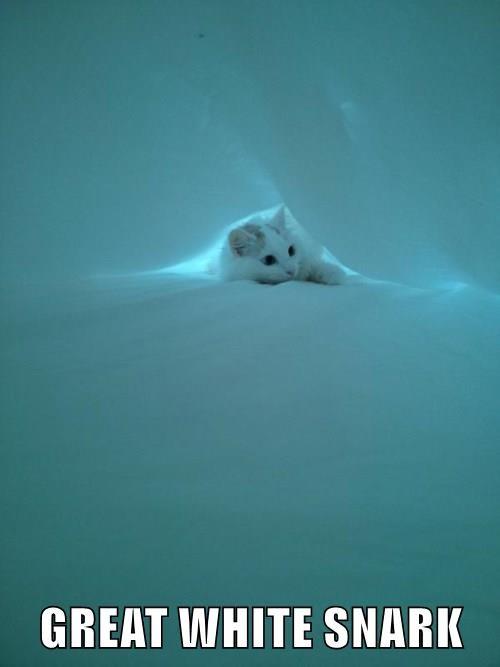 GREAT WHITE SNARK